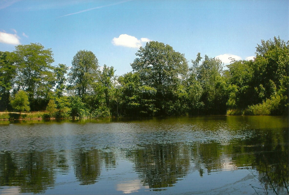 Land for sale hunting and fishing retreat on us 36 near for Private fishing ponds near me